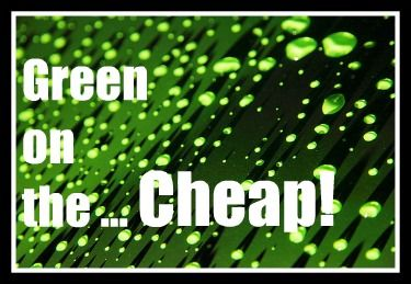 Going Green on the Cheap