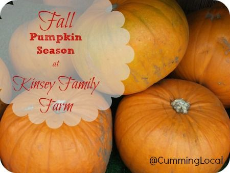 fall at Kinsey Family Farm