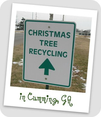 Recycle your Christmas Tree in Forsyth County