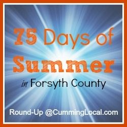 75 Days of Summer Guide