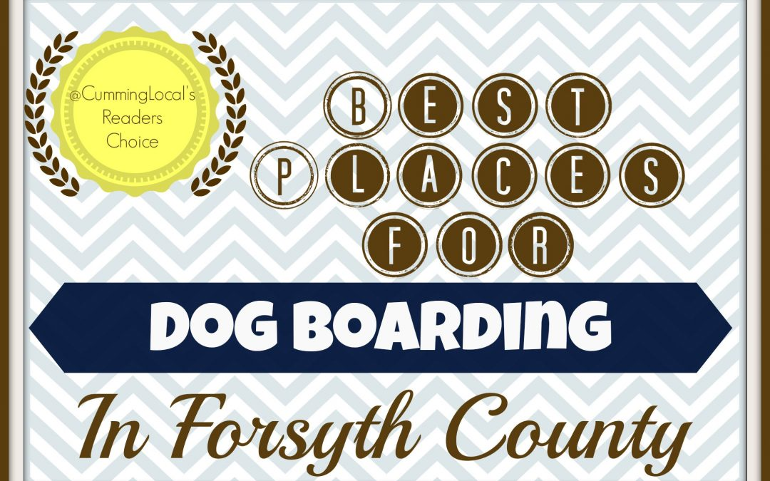 Best Places for Dog Boarding in Forsyth County