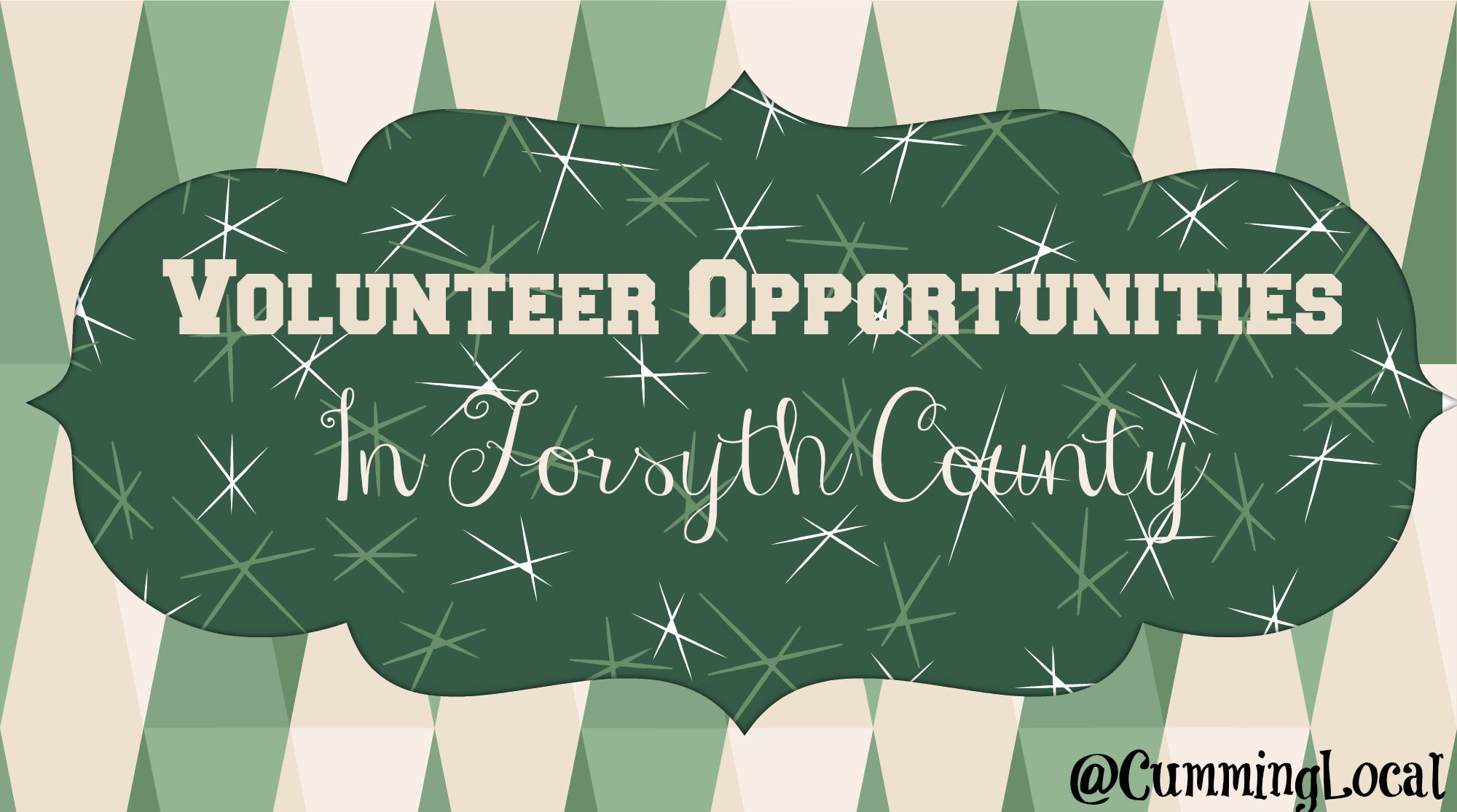 Volunteer Opportunities in Forsyth County 2015