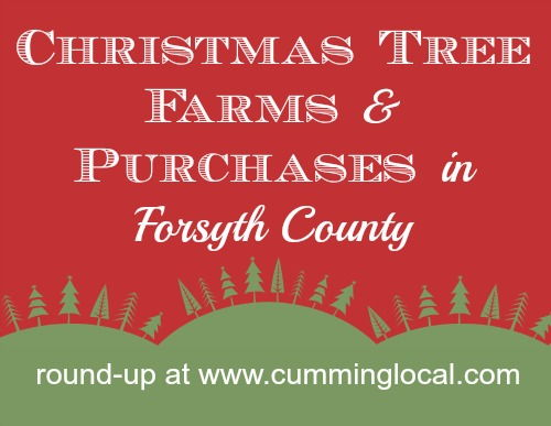 Christmas Tree Farms & Purchases in Forsyth County