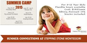 Stepping Stone Summer 2015
