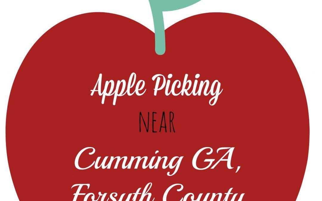 Apple Picking Near Cumming GA