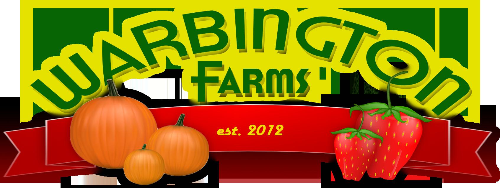 logo3.1png
