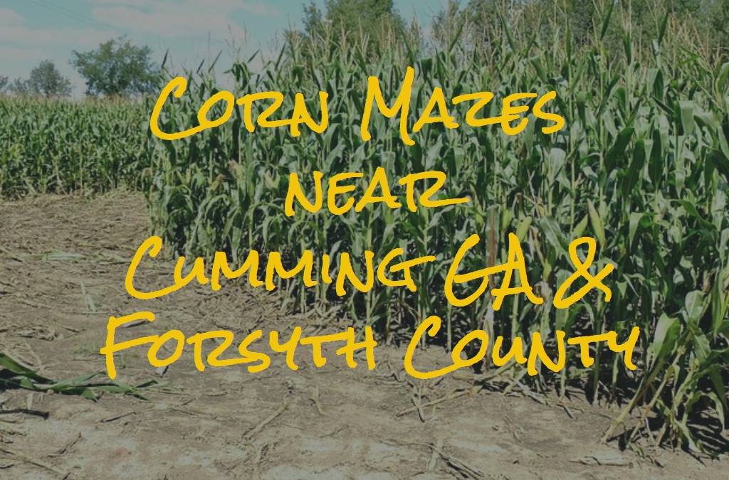 Corn Mazes Near Cumming GA {2018}