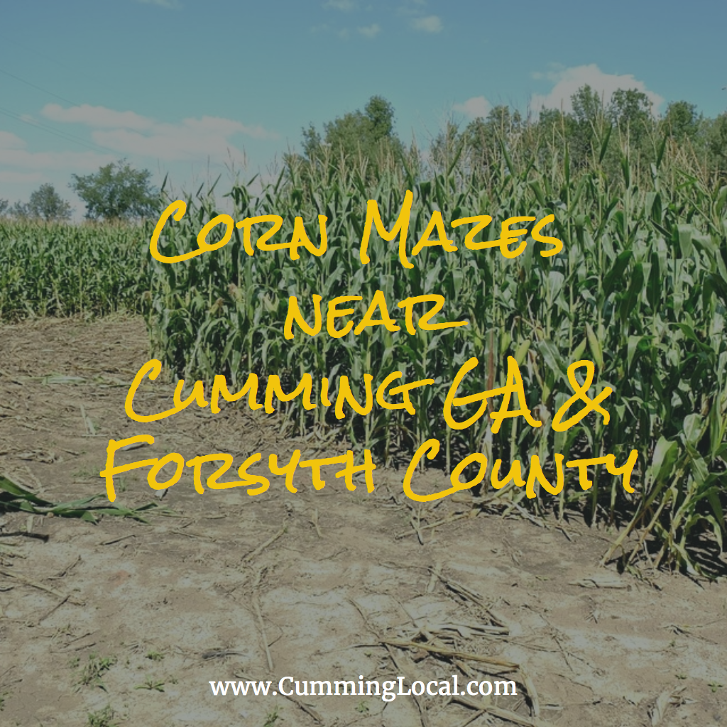 Corn Mazes Near Cumming GA
