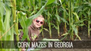corn-mazes-in-georgia