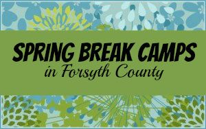 Spring Break Camps 2017