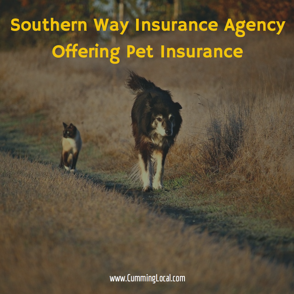 Southern Way Insurance Agency Offering Pet Insurance