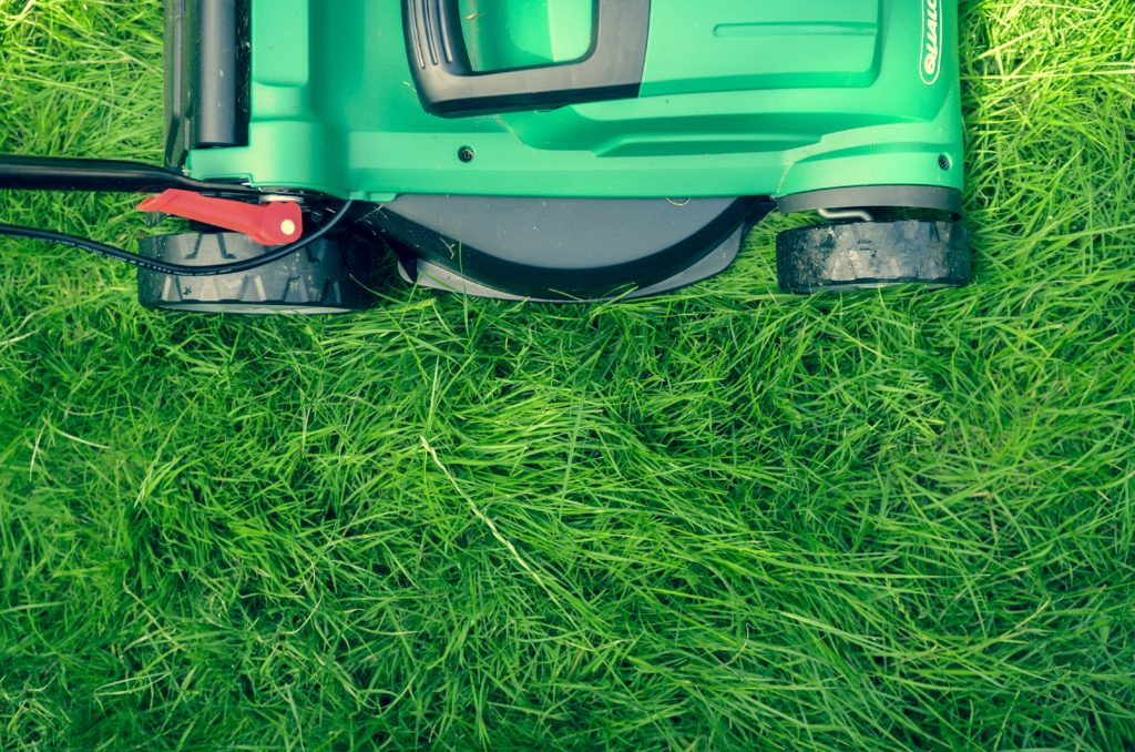 Lawn Care Myths