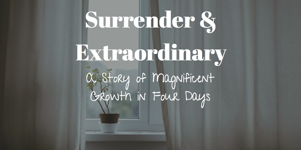 Surrender & Extraordinary: A Story of Magnificent Growth in Four Days
