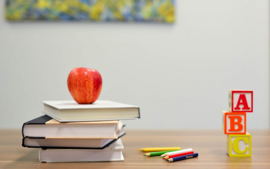 Choosing The Right Path For Your Child's Education