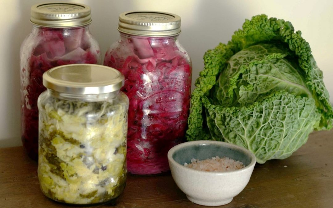 Foundations of Fermentation: Farm to Table series with UGA Extension