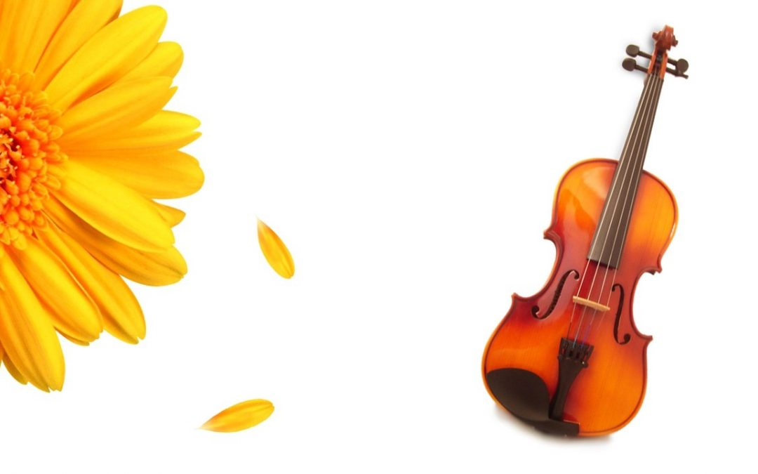 Spring Into Music with the Forsyth Youth Orchestra