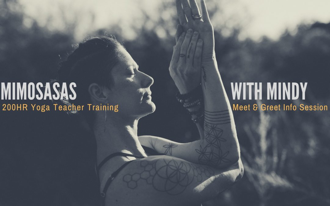 Mimosas With Mindy – Yoga Teacher Training Information
